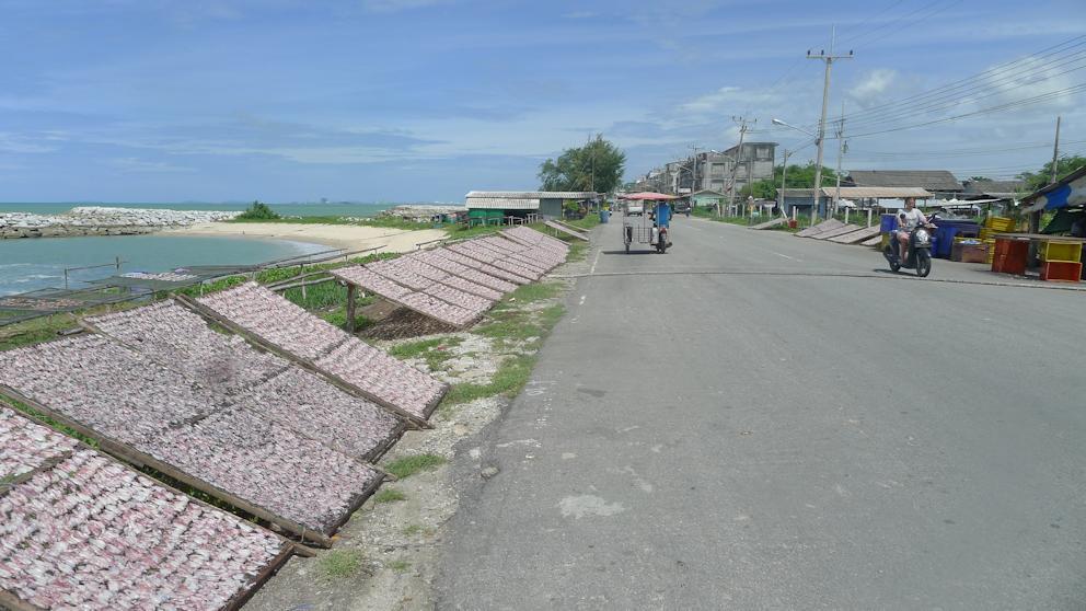 Honda Click near Rayong